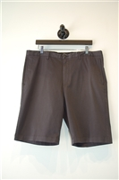 Dark Steel Theory Shorts, size 36