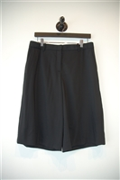 Basic Black Theory Shorts, size 8